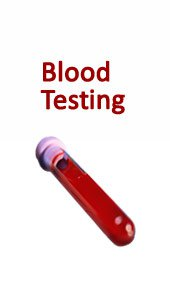 Chronic Fatigue Profile Blood Test